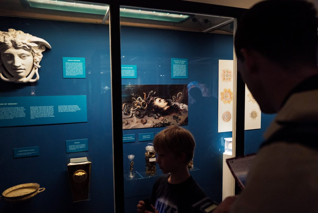 Medusa im Phyletischen Museum bearbeitet mit Lightroom