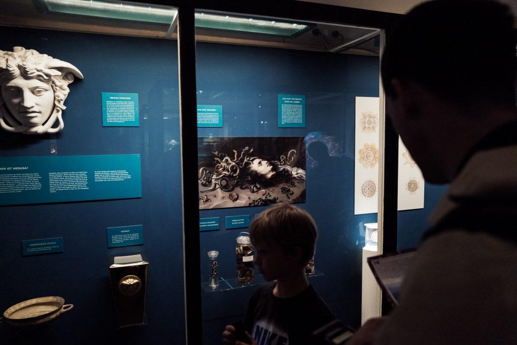 Quallen? Medusa? Was? Im Phyletisches Museum