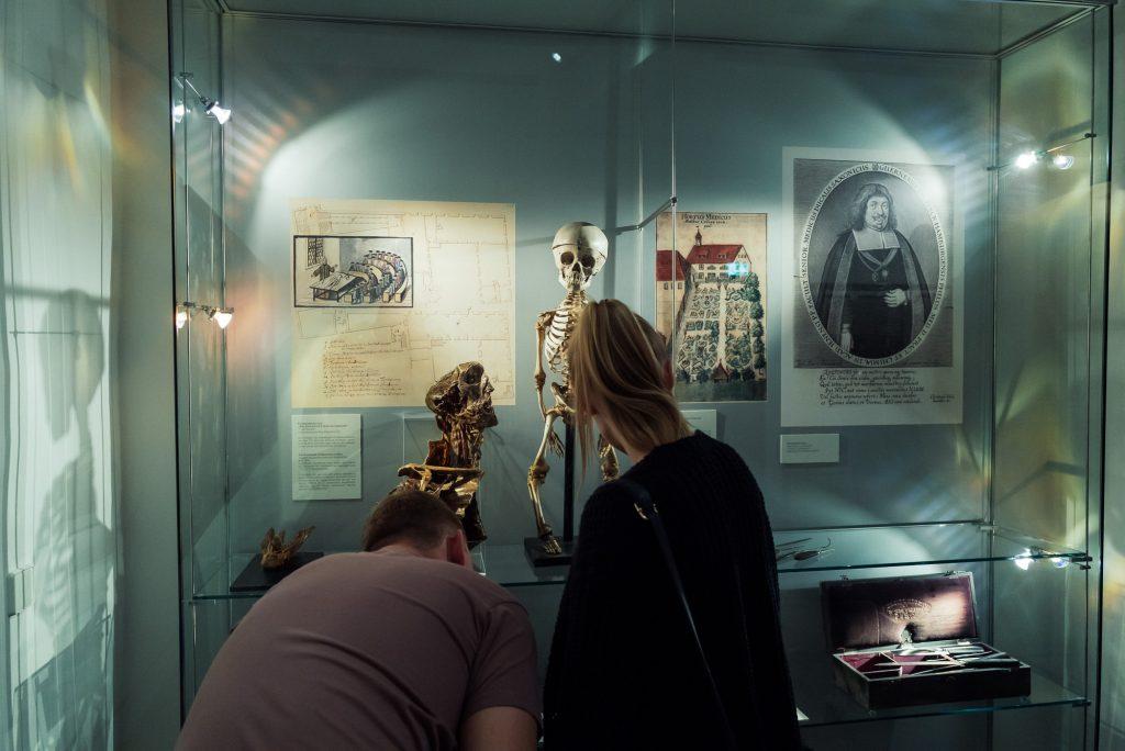 Skelett eines Fünfjährigen im Stadtmuseum Jena bearbeitet mit Lightroom
