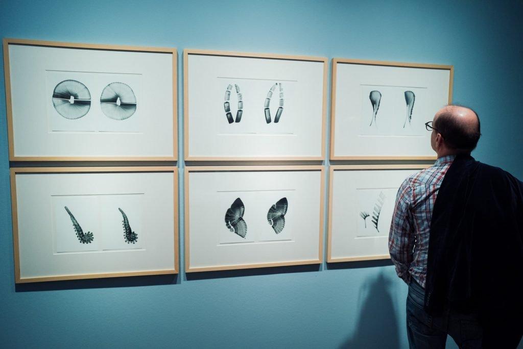 Grafiken im Stadtmuseum Jena bearbeitet mit Lightroom