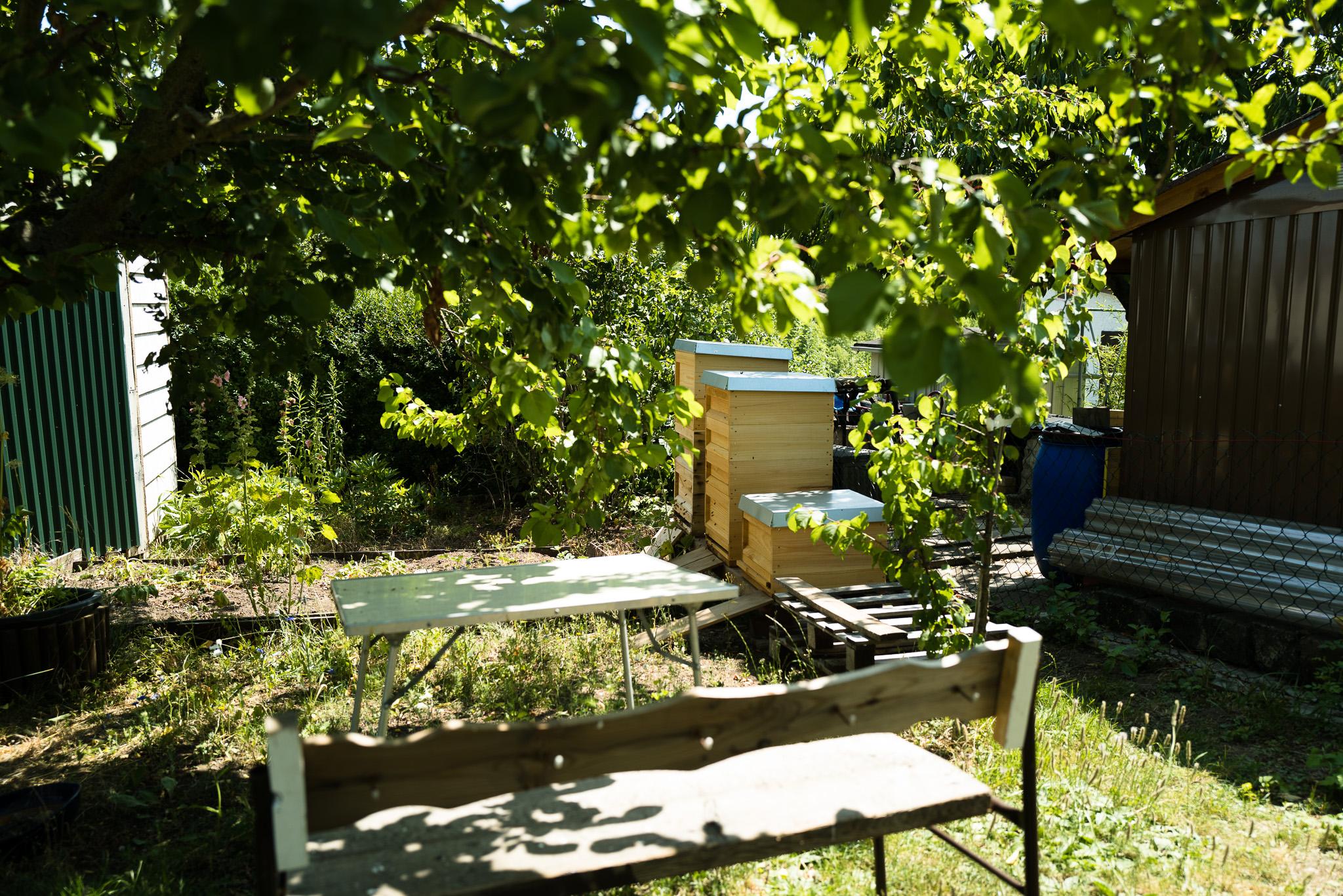 Bienenstoecke