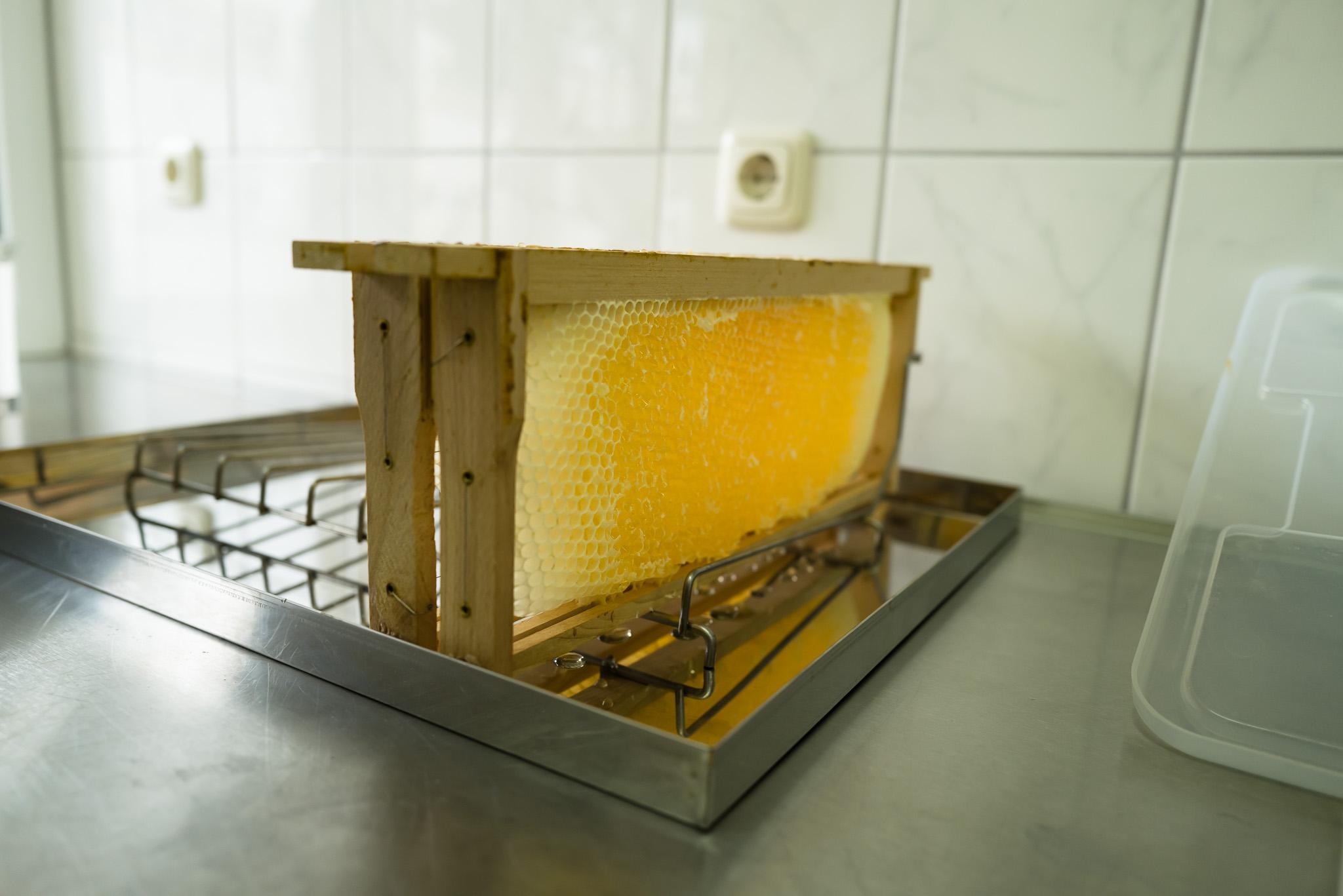 Imker - Entdeckelte Honigwaben